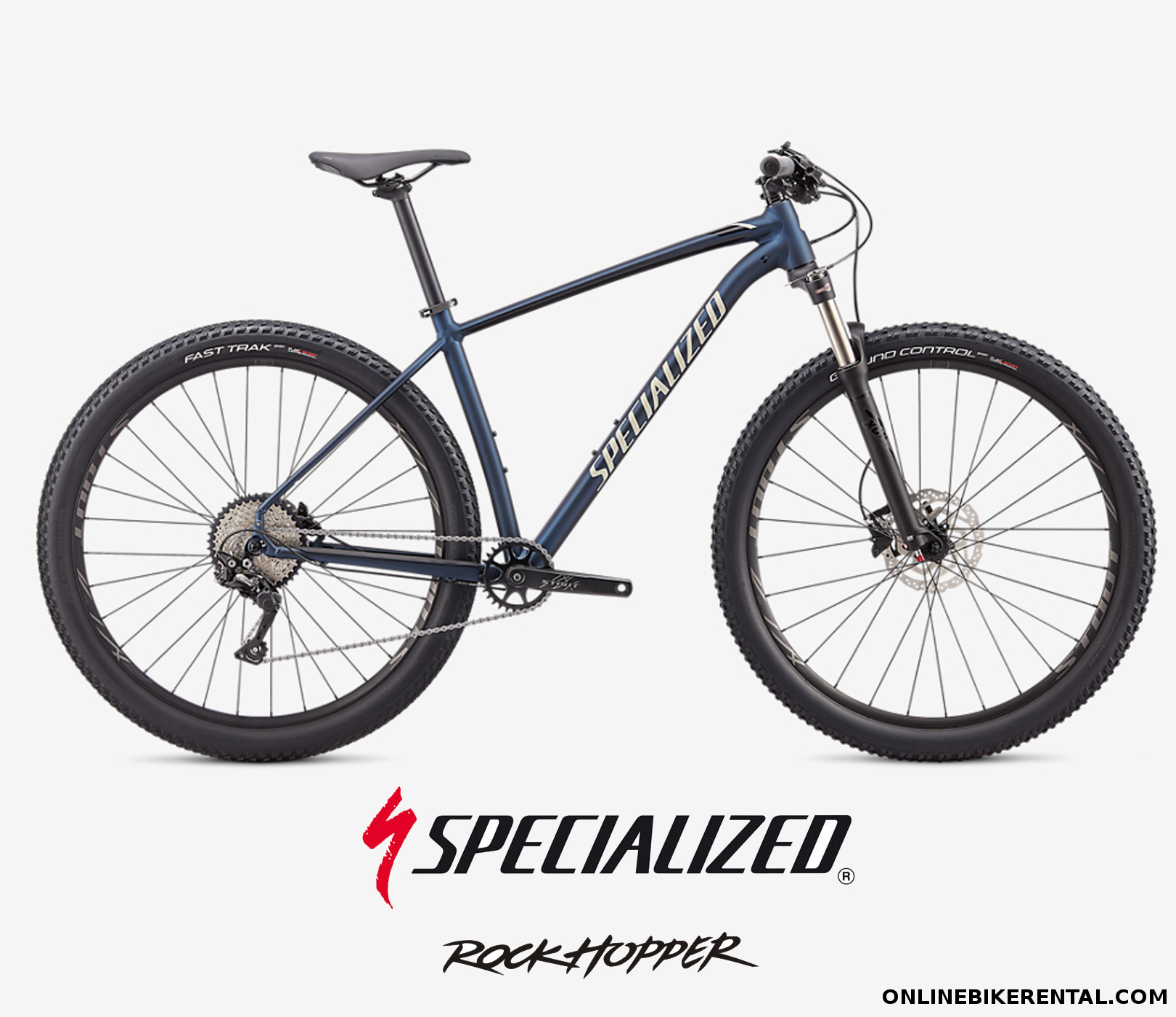 Rent specialized Torrevieja Alicante
