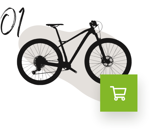 rent a bike online